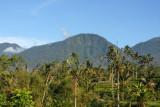 GUNUNG ADENG (1826 m) Bali