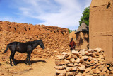 Horse in the Dogon village of Songho