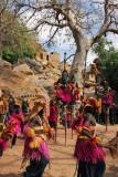 Dogon mask dance, Tereli