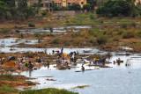 Public laundry below the King Fahd Bridge, Bamako, Mali