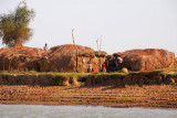Huts of a small village on the south bank of the Niger River