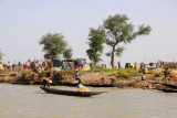 Along the Niger River