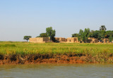 Green riverbanks of the Niger River, Mali