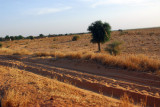 International highway between Mali and Niger...in need of upgrading
