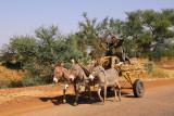 Triple donkey cart, Niger