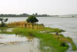 Looking downstream from the Kennedy Bridge, Niamey, Niger