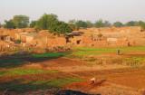 Tending crops by a village near Gaya, Niger