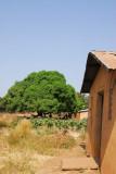 Miller's house, Benin