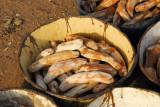 Yams at a roadside market, Tchatchou, Benin