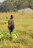 Gardener, Dassa-Zoumé