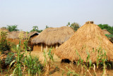 More thatched huts, south-central Benin