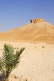 Palmyra Castle