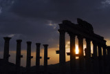 Colonnade at sunset, Palmyra