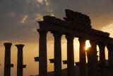Palmyra - Sunset
