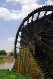 Noria waterwheel on the Orontes River, Hama