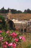Noria, Hama