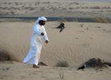 Falconry, Bab Al Shams