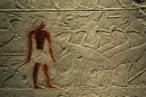 Offering Scene from tombof Ka-em-rehu, ca 2300 BC