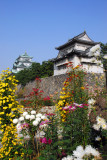 Chrysanthemum Exhibition, Nagoya Castle