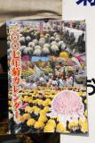 Kiku-no-hana Taikai (Chrysanthemum Exhibition) Nagoya