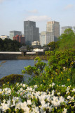 South Moat with flowers, Imperial Palace