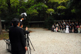 Wedding photographer at work, Meiji Shrine, Tokyo