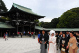 Meiji Shrine, hugely popular for weddings in Tokyo