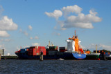 Container ship Jork Reliance (St. John's - 9328041) Port of Hamburg