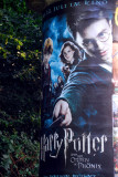 German poster for Harry Potter and the Order of the Phoenix