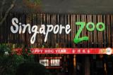 Happy Hog Year - Singapore Zoo