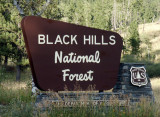 Black Hills National Forest, South Dakota