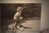 Playful animalscirca 1947