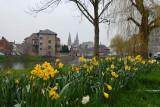 > SD Dendermonde