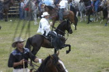 Rodeo and bull fight
