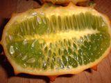 alien pod fruit