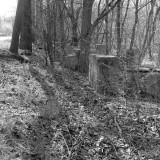 Trestle Remains
