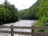 A Loyalsock View