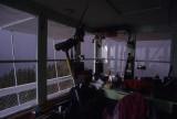 Inside Saddleback LO lit by lightning strike.jpg