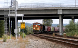Seattle-bound BNSF grain train rounds the curve under Interstate 405