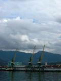 Batumi cranes