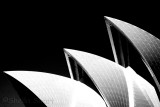 Sydney Opera House - a black and white abstract