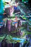 Moorhen reflection in Botanic Gardens