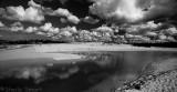 Curl Curl  beach in black and white