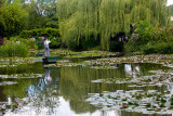 Water lily pond at Monet's Gardens