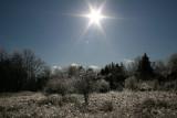 Sun and Ice