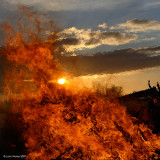 Fire In The Sky 84