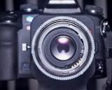 Ring on Bellows 3009.jpg