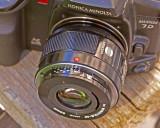 Bower on Camera 6974.jpg