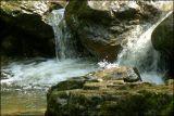 PICT4536_W.jpg