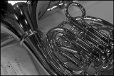 french horn - B & W